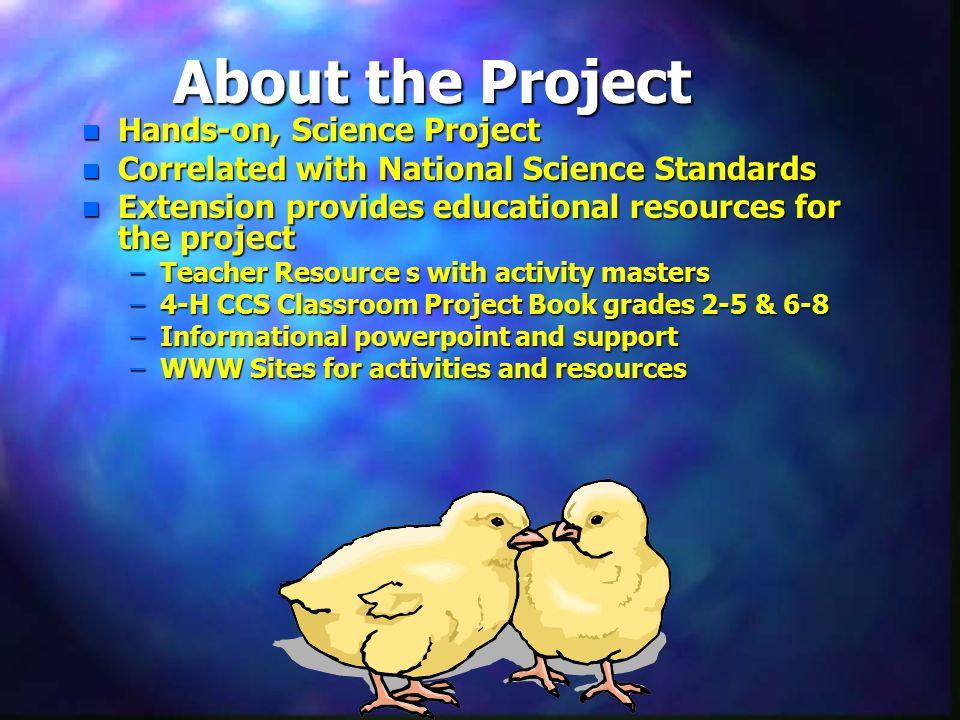 Chicken and Egg Basics