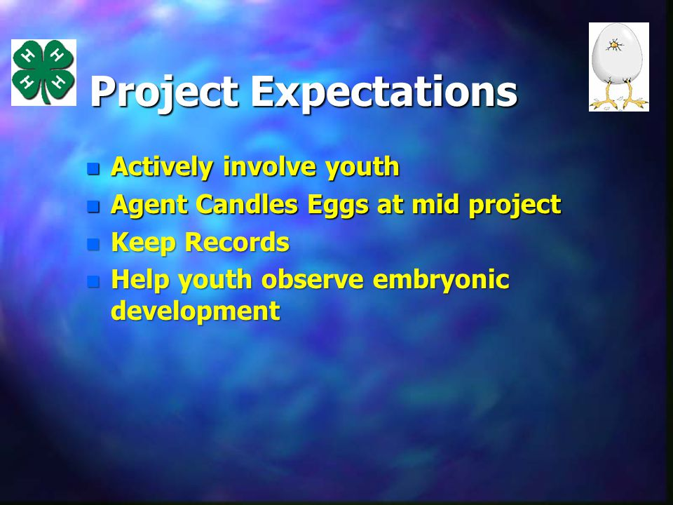 Project Expectations n Actively involve youth n Agent Candles Eggs at mid project n Keep Records n Help youth observe embryonic development