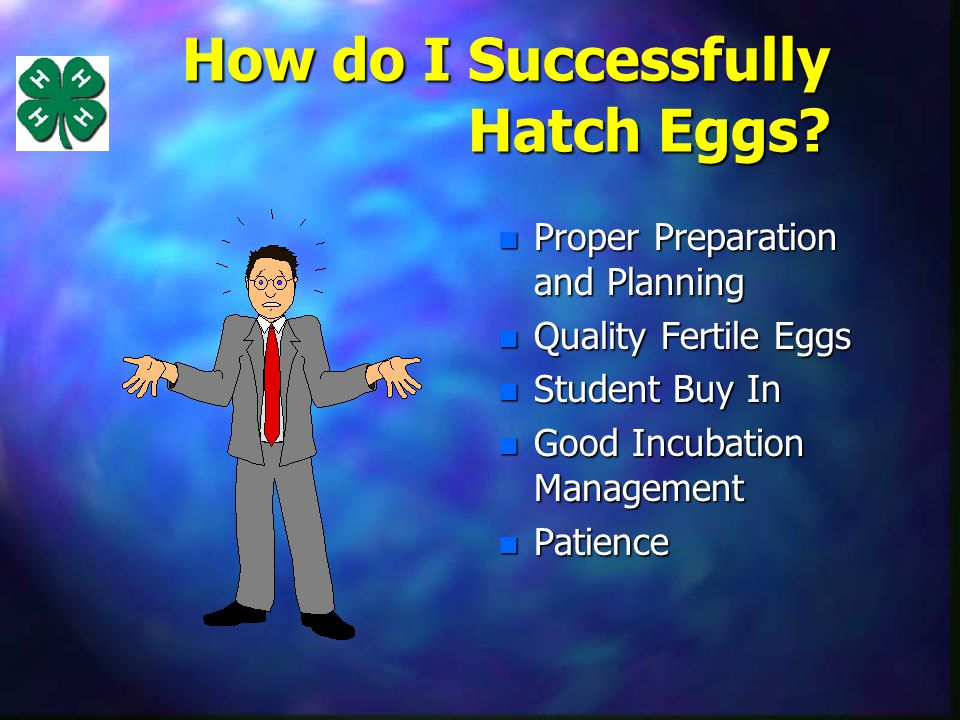 How do I Successfully Hatch Eggs.