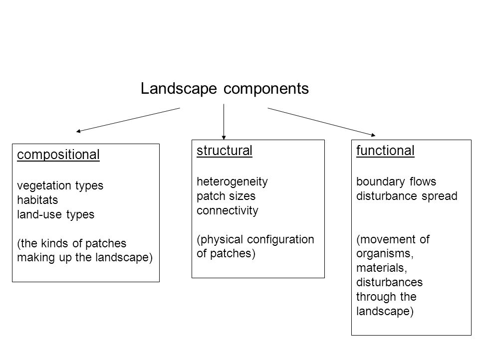 Landscape components compositional vegetation types habitats land-use types (the kinds of patches making up the landscape) structural heterogeneity pa