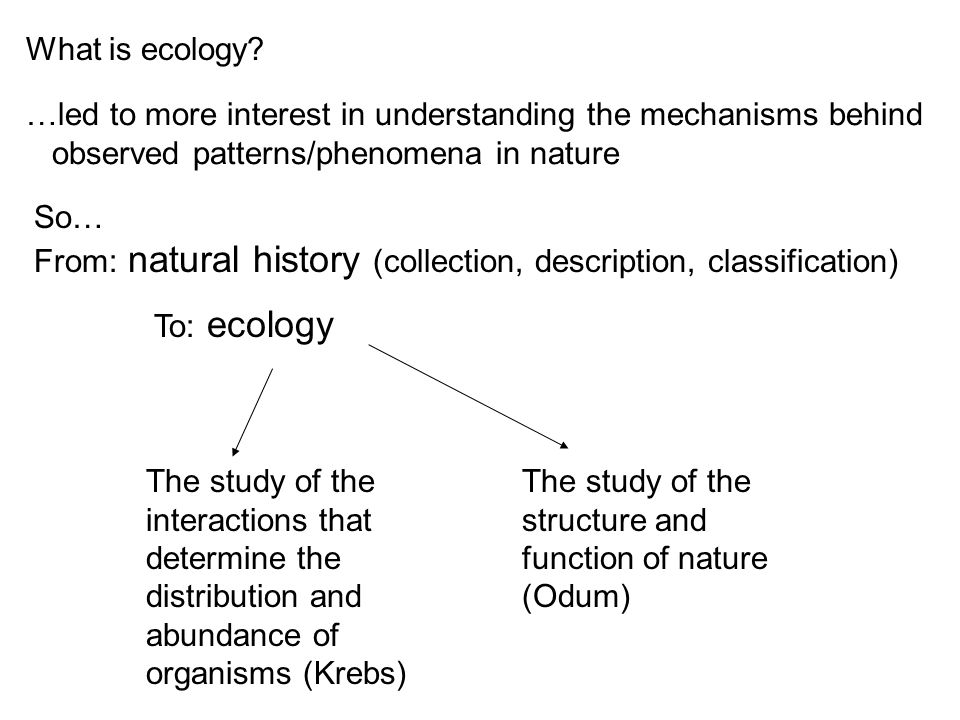 So… From: natural history (collection, description, classification) The study of the interactions that determine the distribution and abundance of org