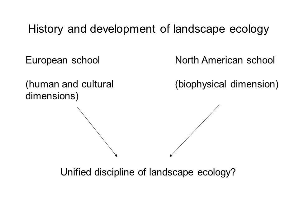 History and development of landscape ecology European school (human and cultural dimensions) North American school (biophysical dimension) Unified discipline of landscape ecology