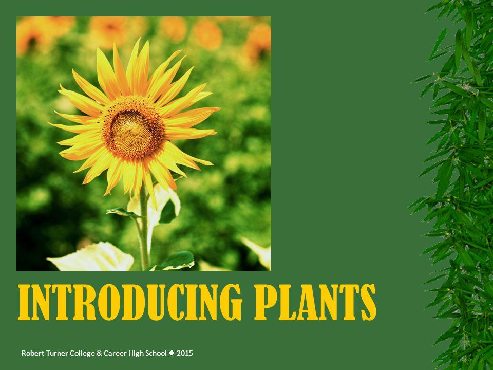 Robert Turner College & Career High School  2015 INTRODUCING PLANTS