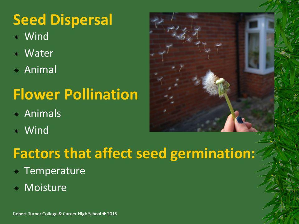 Robert Turner College & Career High School  2015  Wind  Water  Animal Seed Dispersal Factors that affect seed germination:  Temperature  Moistur