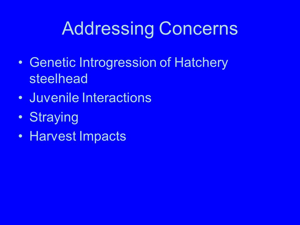 Addressing Concerns Genetic Introgression of Hatchery steelhead Juvenile Interactions Straying Harvest Impacts
