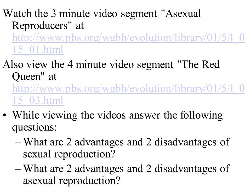 Watch the 3 minute video segment