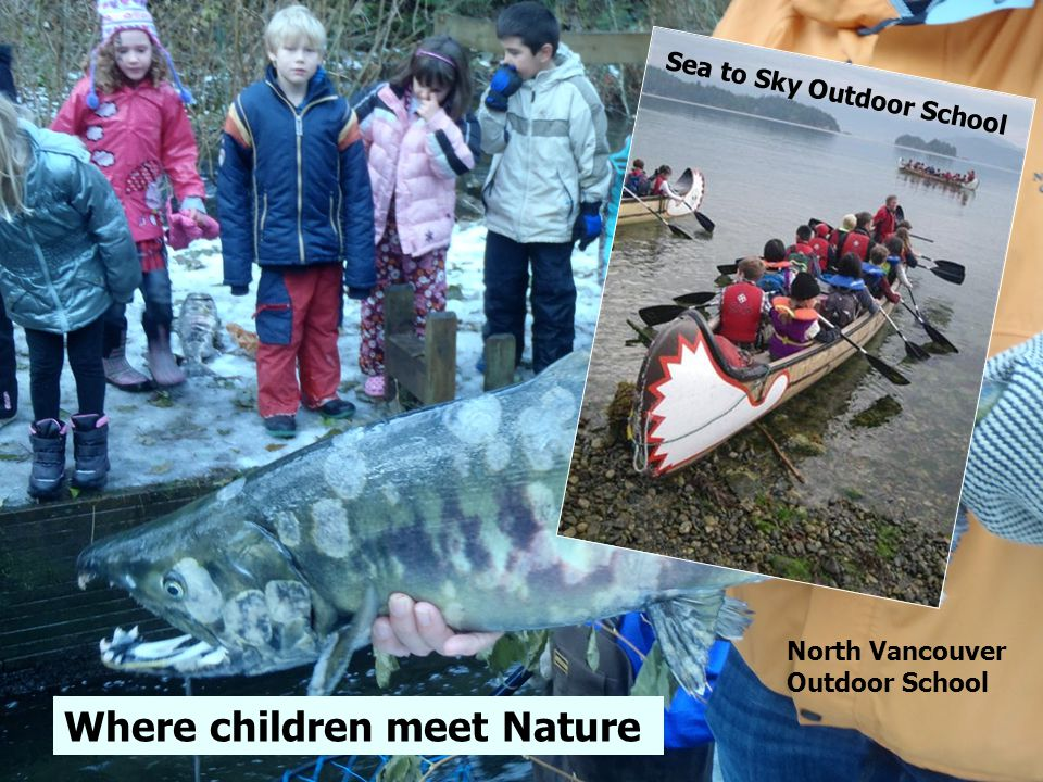 Eagles, salmon Where children meet Nature Sea to Sky Outdoor School North Vancouver Outdoor School