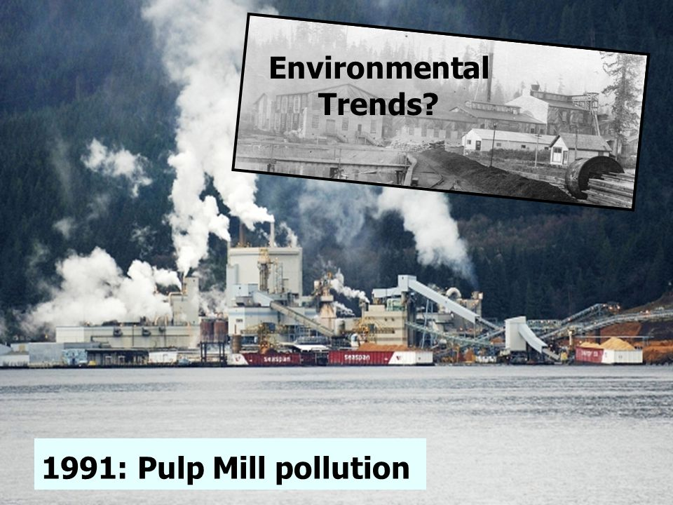 1991: Pulp Mill pollution Environmental Trends?