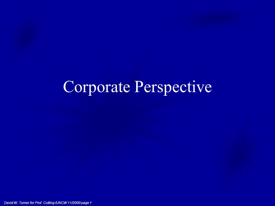 David W. Turner for Prof. Cutting /UNCW 11/2000 page 1 Corporate Perspective