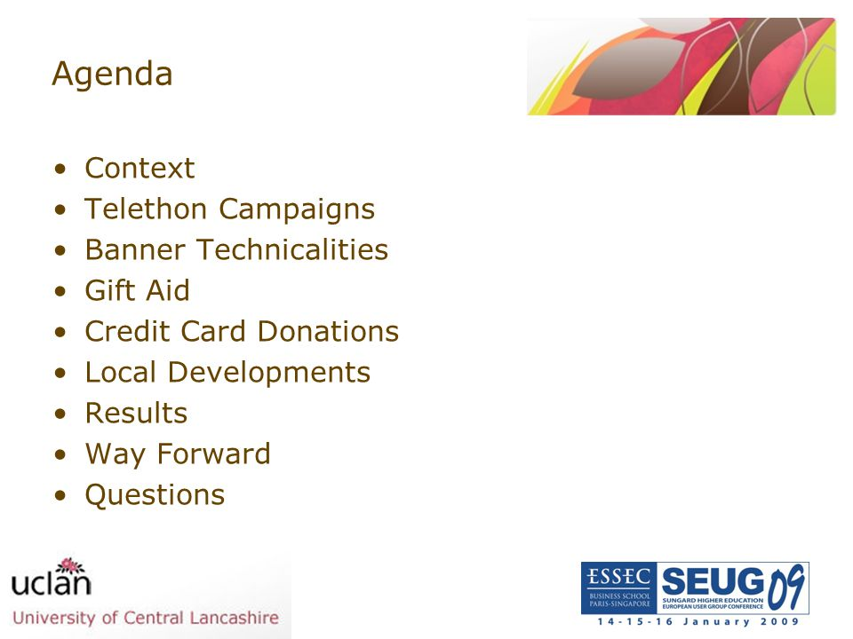 Agenda Context Telethon Campaigns Banner Technicalities Gift Aid Credit Card Donations Local Developments Results Way Forward Questions
