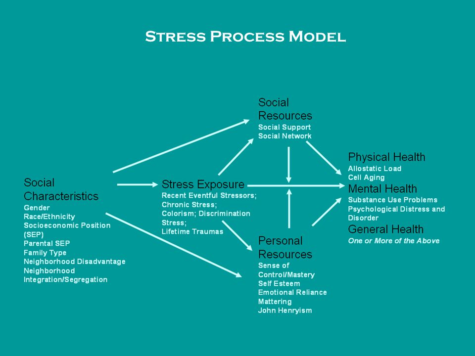 Stress Process Model