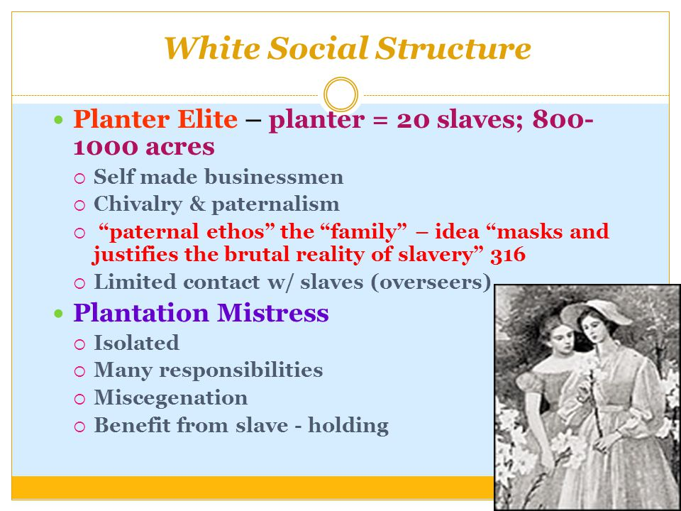 White Social Structure Planter Elite – planter = 20 slaves; 800- 1000 acres  Self made businessmen  Chivalry & paternalism  paternal ethos the family – idea masks and justifies the brutal reality of slavery 316  Limited contact w/ slaves (overseers) Plantation Mistress  Isolated  Many responsibilities  Miscegenation  Benefit from slave - holding