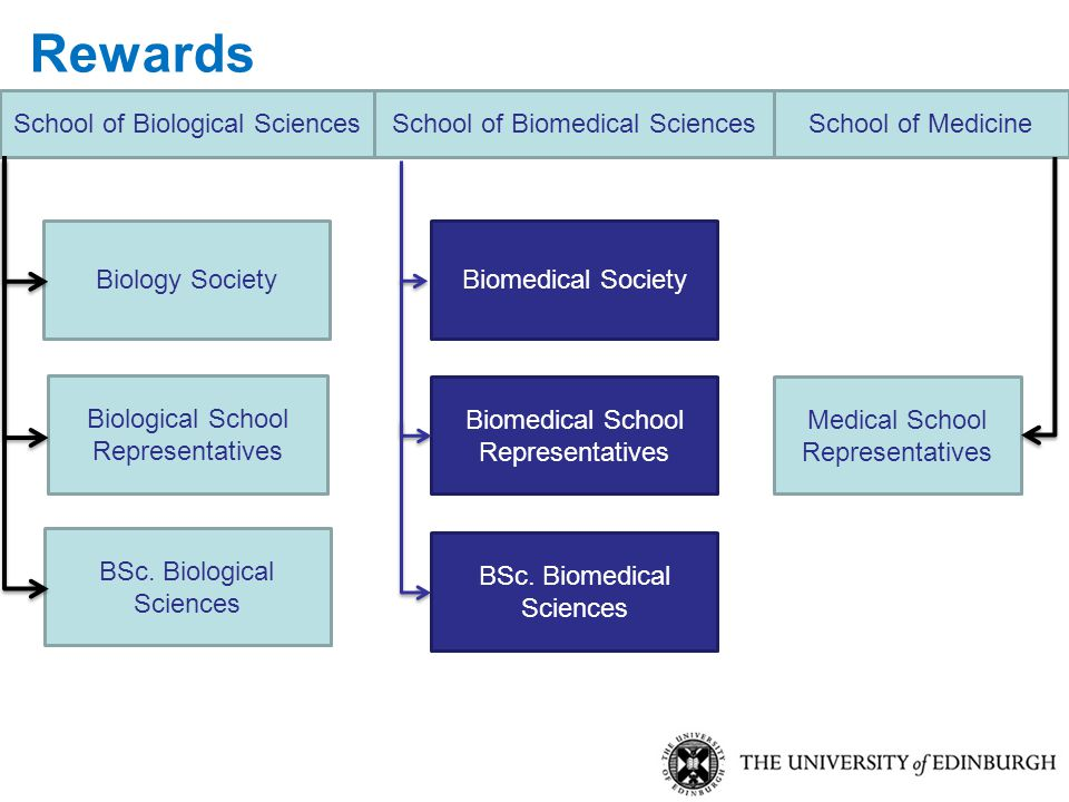BSc. Biomedical Sciences Biomedical Society Biomedical School Representatives School of Biomedical Sciences BSc. Biological Sciences Biology Society M