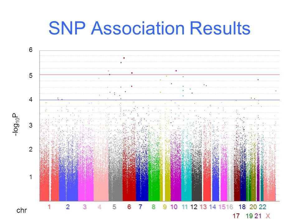 SNP Association Results 1 2 3 4 5 6 7 8 9 10 11 12 1314 1516 18 20 22 1 2 3 4 5 6 7 8 9 10 11 12 13 14 1516 18 20 22 17 19 21 X 654321654321 -log 10 P chr