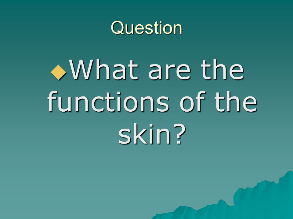 Question  What are the functions of the skin?