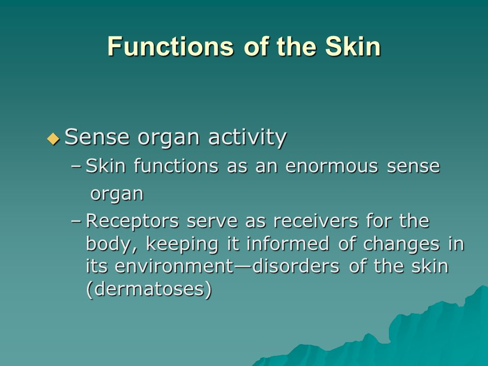Functions of the Skin  Sense organ activity –Skin functions as an enormous sense organ organ –Receptors serve as receivers for the body, keeping it informed of changes in its environment—disorders of the skin (dermatoses)