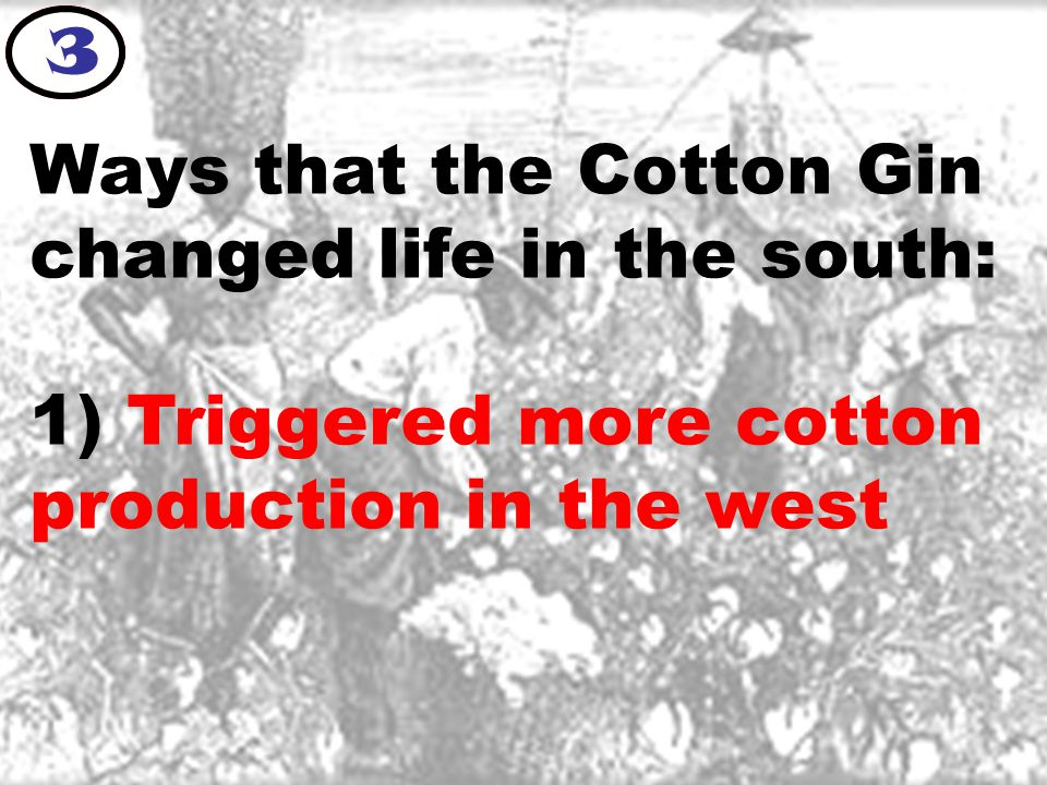 Ways that the Cotton Gin changed life in the south: 1) Triggered more cotton production in the west 3