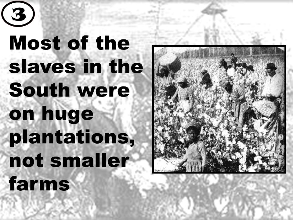 Most of the slaves in the South were on huge plantations, not smaller farms 3