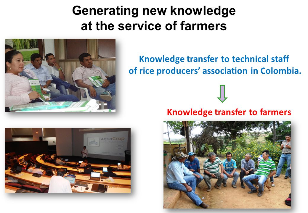 Generating new knowledge at the service of farmers Knowledge transfer to technical staff of rice producers' association in Colombia.
