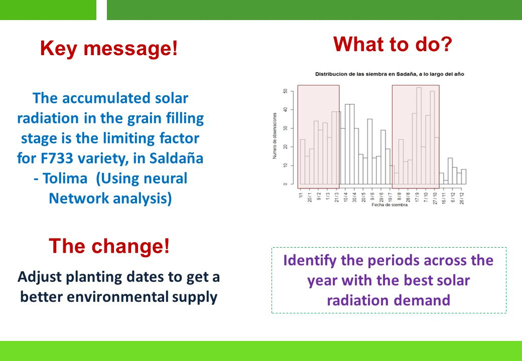 Identify the periods across the year with the best solar radiation demand Del resultado al impacto Adjust planting dates to get a better environmental supply The accumulated solar radiation in the grain filling stage is the limiting factor for F733 variety, in Saldaña - Tolima (Using neural Network analysis) Key message.