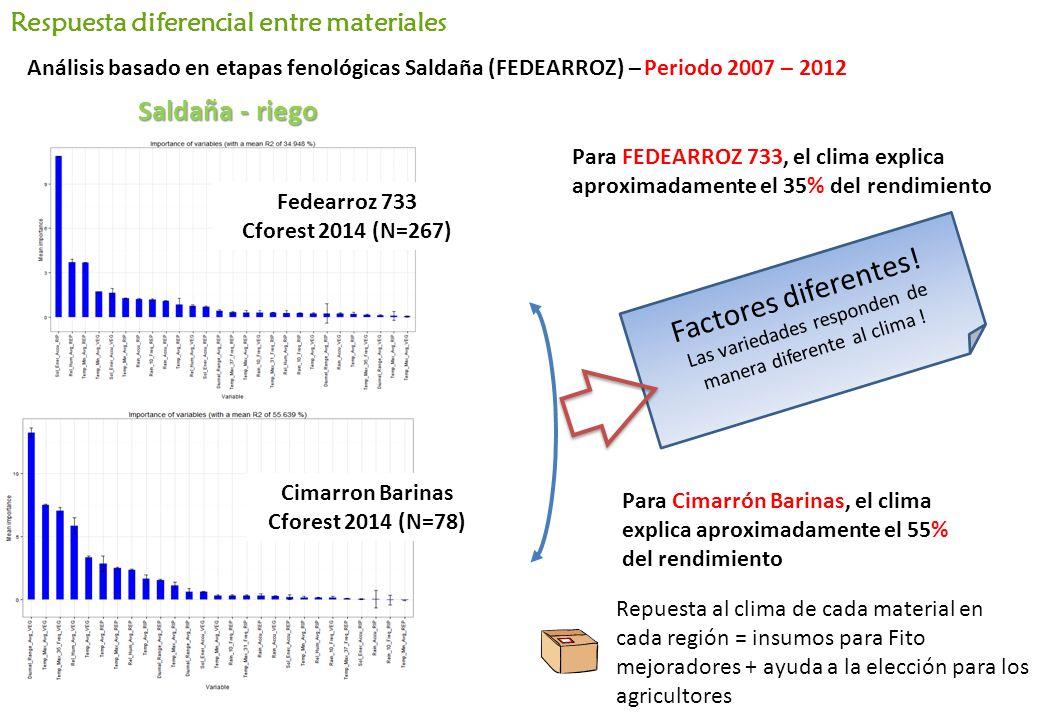 Para FEDEARROZ 733, el clima explica aproximadamente el 35% del rendimiento Para Cimarrón Barinas, el clima explica aproximadamente el 55% del rendimiento Factores diferentes.