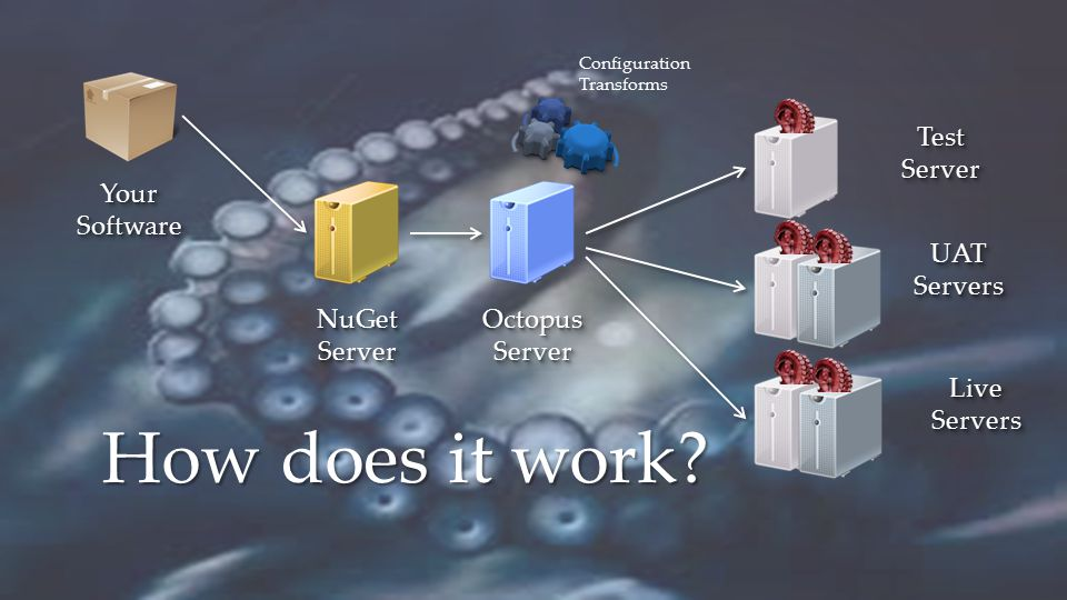 How does it work? NuGetServerNuGetServerOctopusServerOctopusServer TestServerTestServer UATServersUATServers LiveServersLiveServers YourSoftwareYourSo