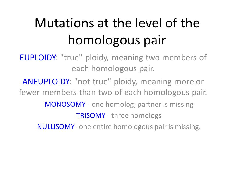 Mutations at the level of the homologous pair EUPLOIDY: true ploidy, meaning two members of each homologous pair.