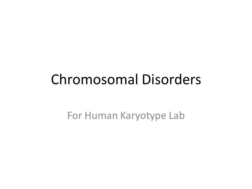 Chromosomal Disorders For Human Karyotype Lab