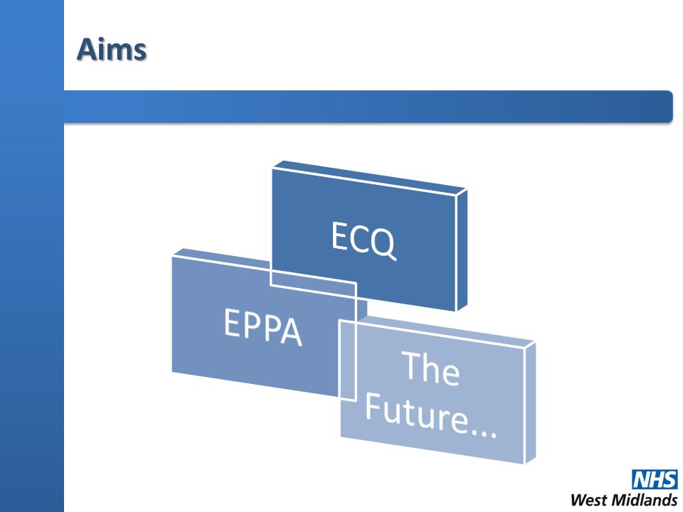 Evaluation of ECQ Pilot: Future Challenges  Partnership Dynamics  50% Education in Practice, 50% Education Theory...