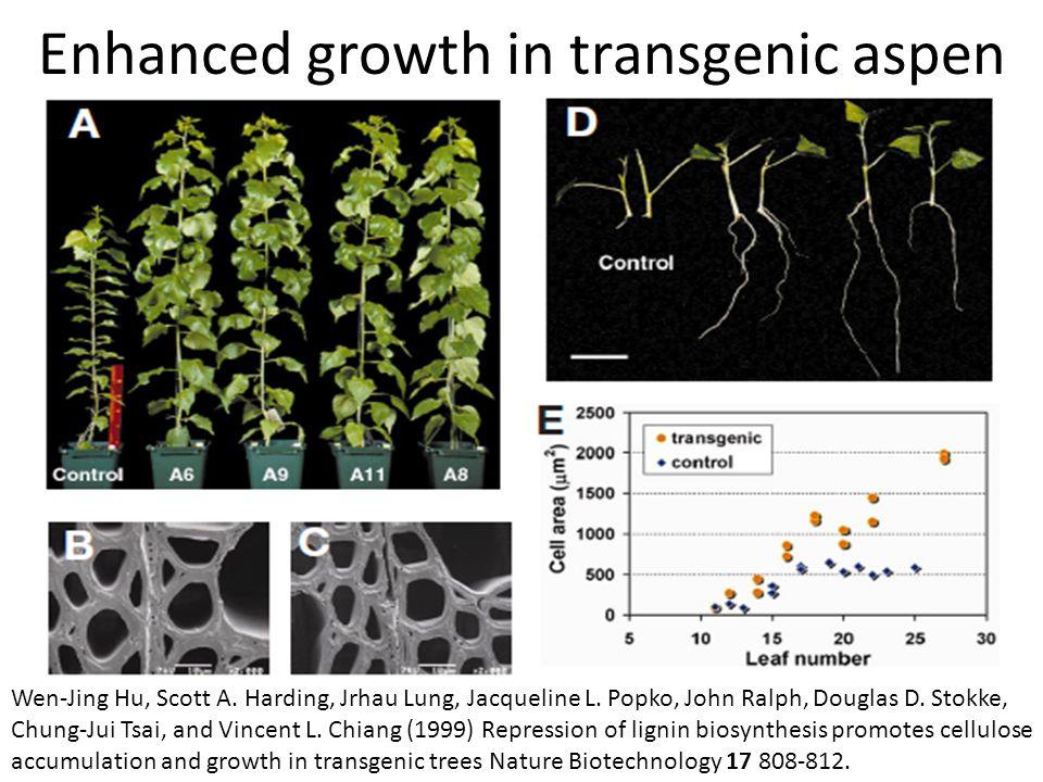 Enhanced growth in transgenic aspen Wen-Jing Hu, Scott A.