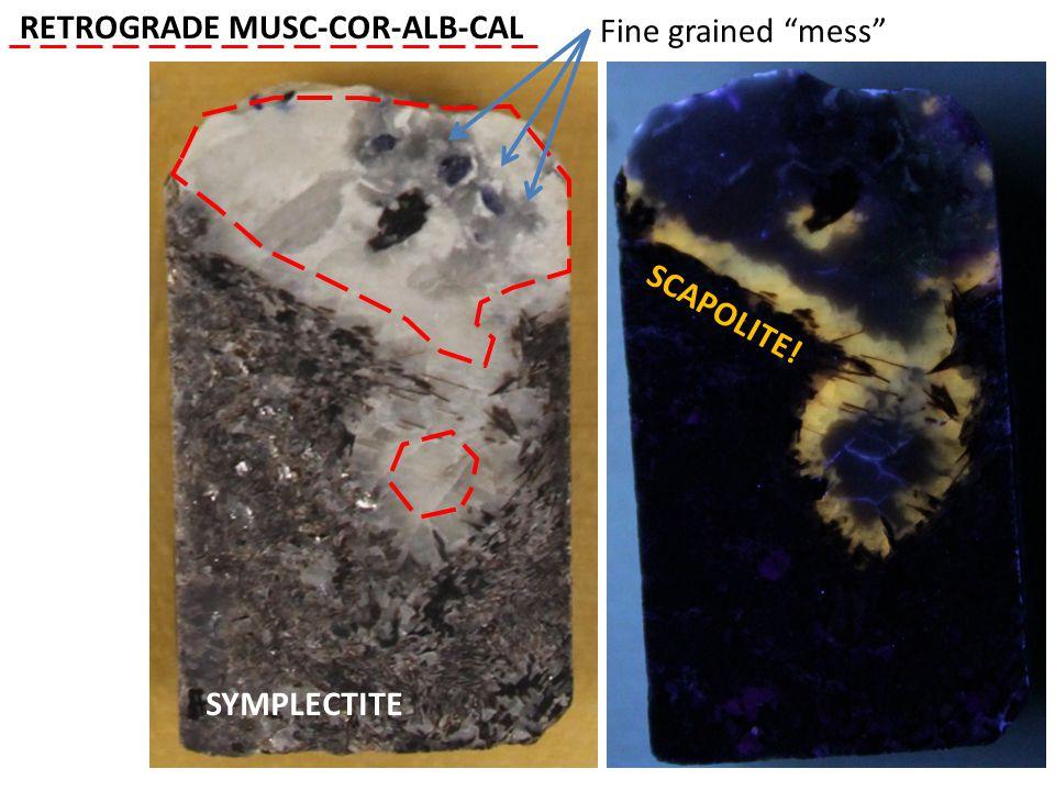 SYMPLECTITE SCAPOLITE! Fine grained mess RETROGRADE MUSC-COR-ALB-CAL