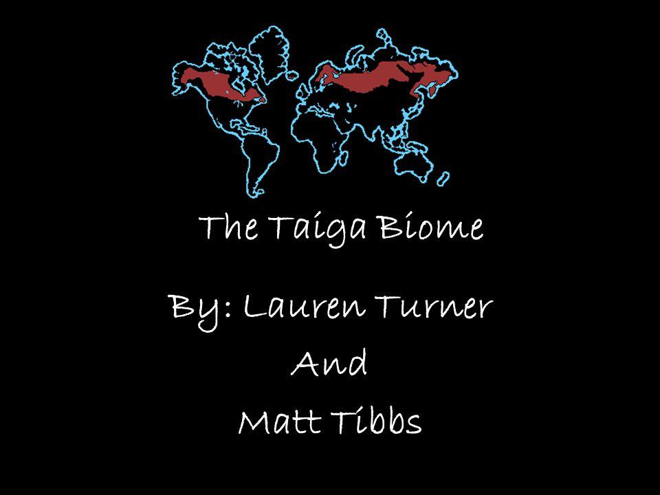 The Taiga Biome By: Lauren Turner And Matt Tibbs