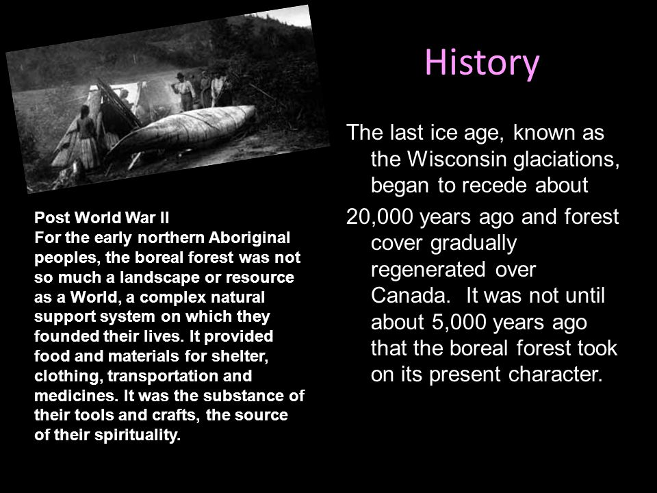 History The last ice age, known as the Wisconsin glaciations, began to recede about 20,000 years ago and forest cover gradually regenerated over Canad