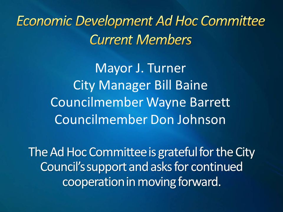 The Ad Hoc Committee is grateful for the City Council's support and asks for continued cooperation in moving forward.