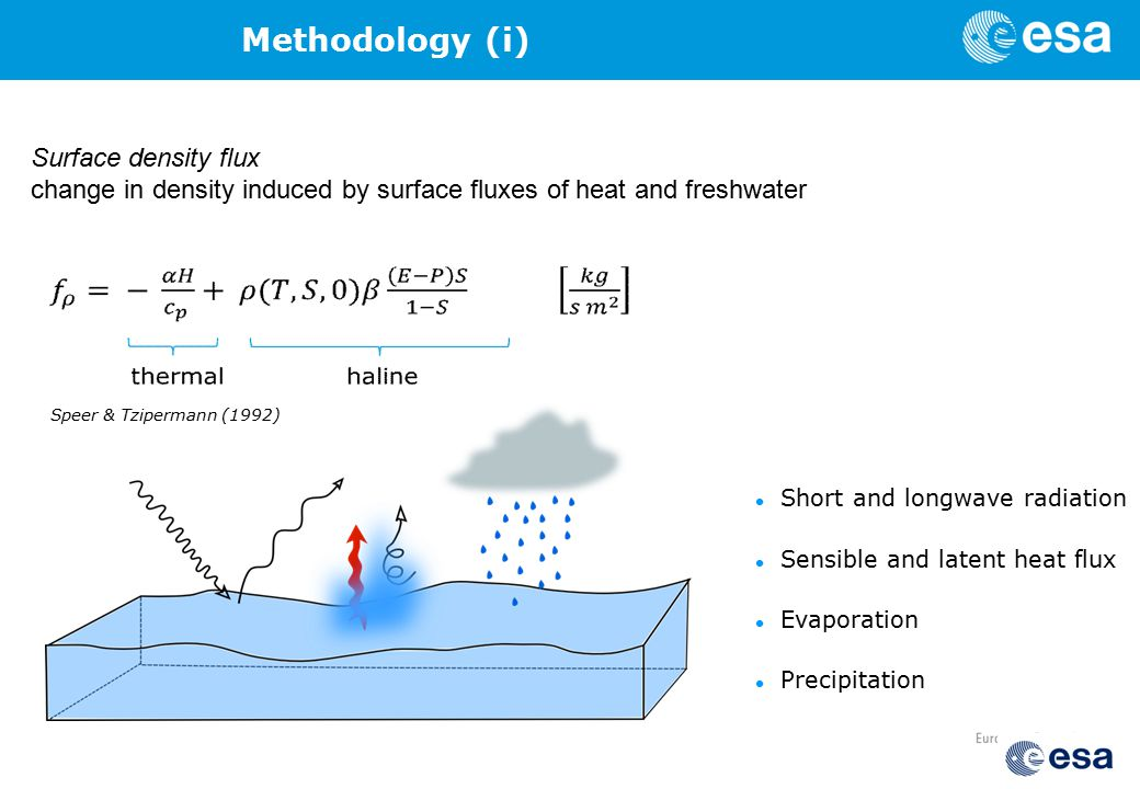 Short and longwave radiation Sensible and latent heat flux Evaporation Precipitation Speer & Tzipermann (1992) Surface density flux change in density induced by surface fluxes of heat and freshwater Methodology (i)