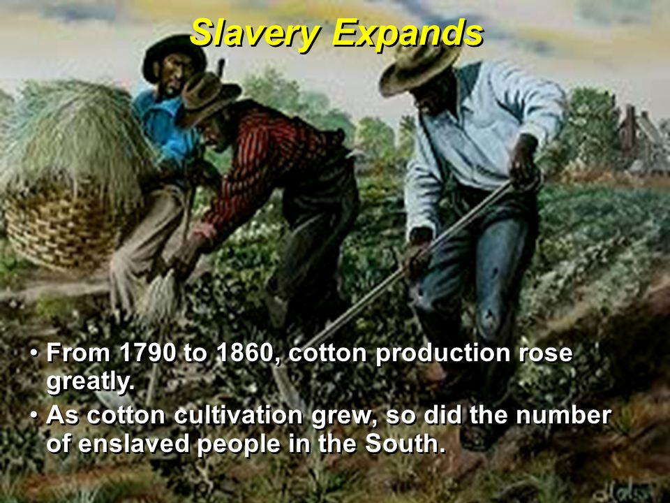 Slavery Expands From 1790 to 1860, cotton production rose greatly.From 1790 to 1860, cotton production rose greatly.