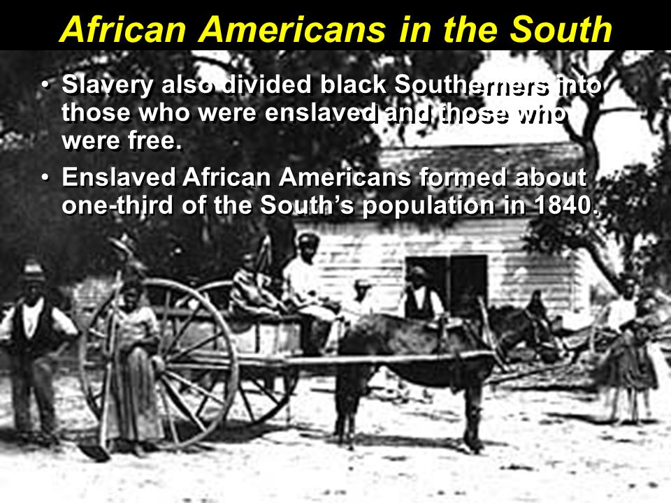 African Americans in the South Slavery also divided black Southerners into those who were enslaved and those who were free.