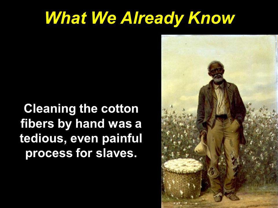 The Nat Turner Rebellion Nat Turner was a slave preacher who could read.Nat Turner was a slave preacher who could read.