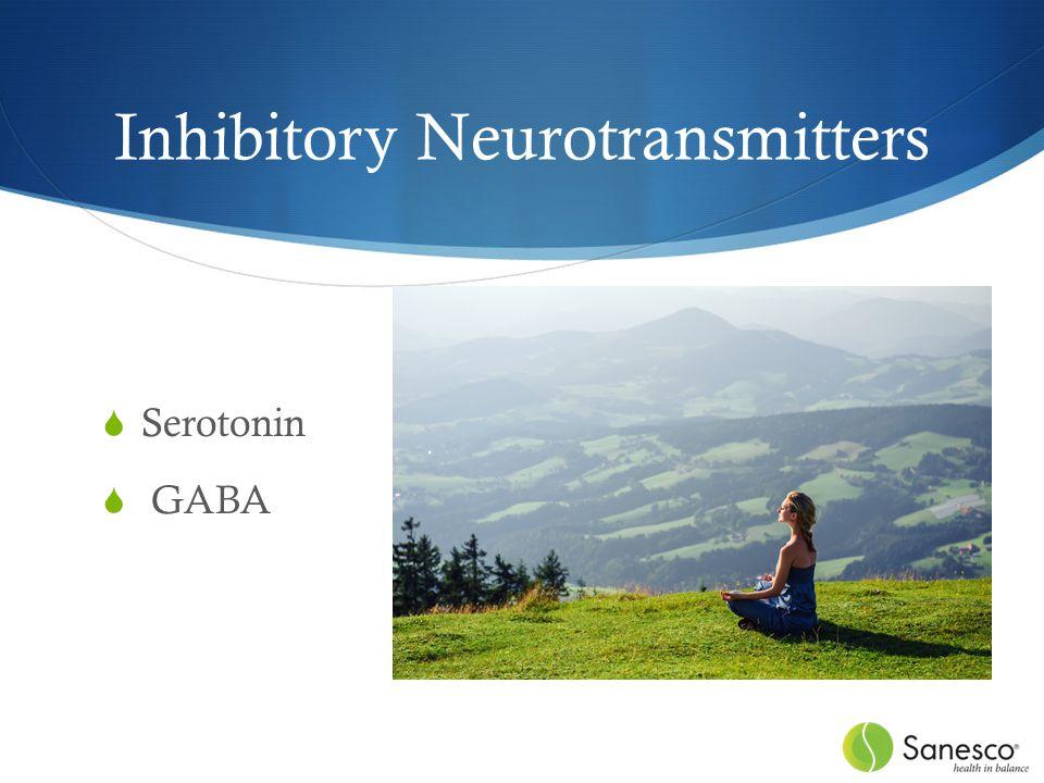 Inhibitory Neurotransmitters  Serotonin  GABA