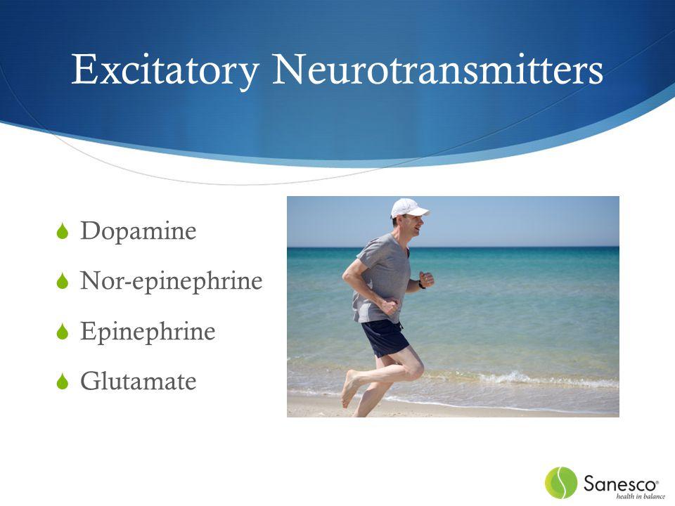 Excitatory Neurotransmitters  Dopamine  Nor-epinephrine  Epinephrine  Glutamate
