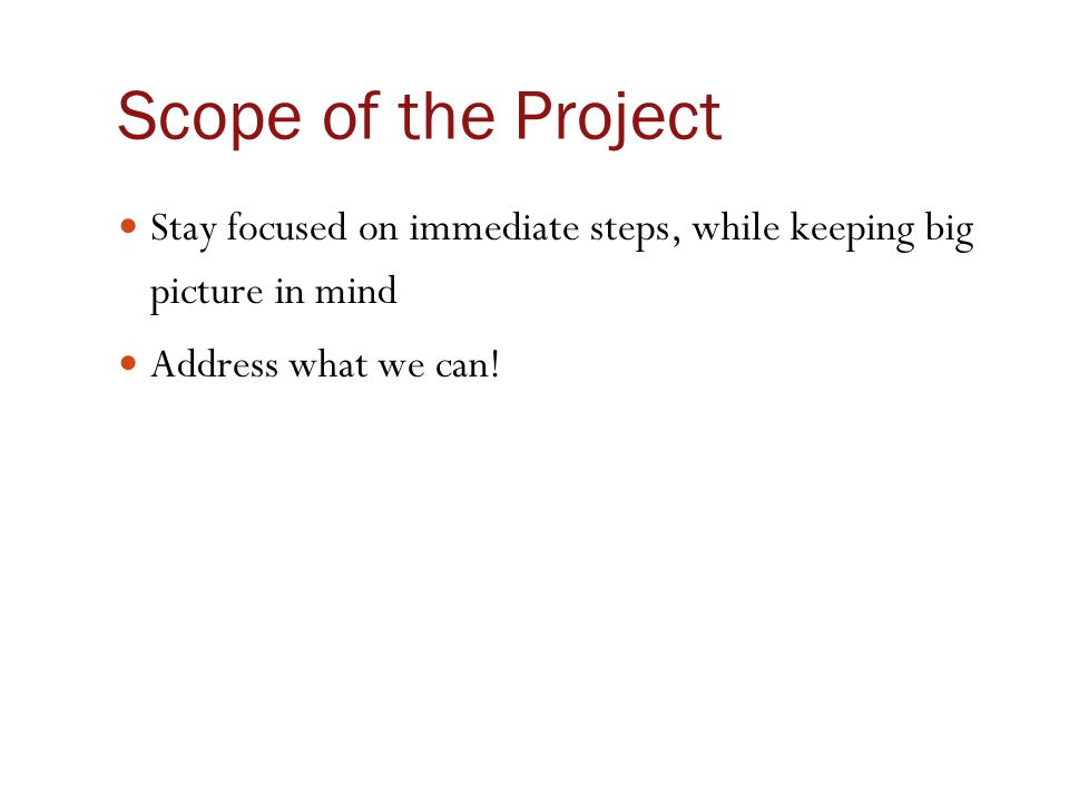 Scope of the Project Stay focused on immediate steps, while keeping big picture in mind Address what we can!