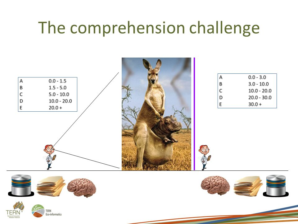 The comprehension challenge