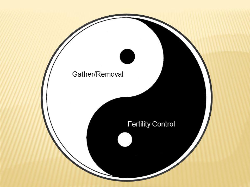 Gather/Removal Fertility Control