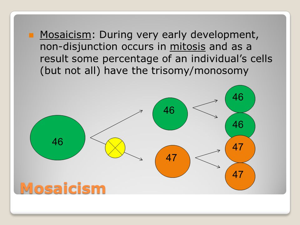 Mosaicism n Mosaicism: During very early development, non-disjunction occurs in mitosis and as a result some percentage of an individual's cells (but