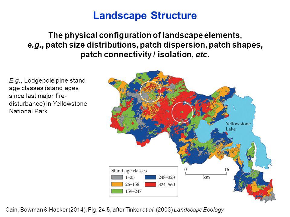 Cain, Bowman & Hacker (2014), Fig. 24.5, after Tinker et al. (2003) Landscape Ecology The physical configuration of landscape elements, e.g., patch si