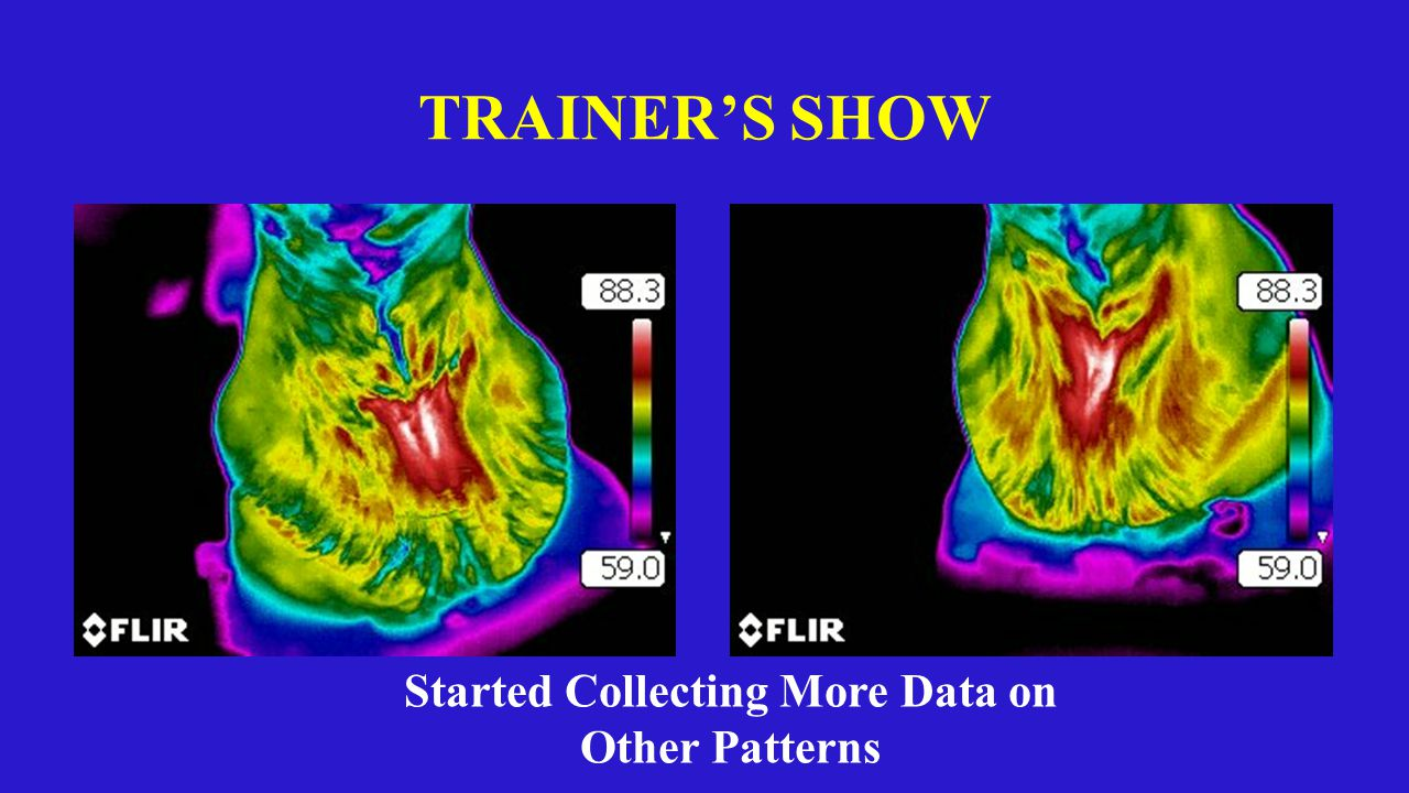 TRAINER'S SHOW Started Collecting More Data on Other Patterns