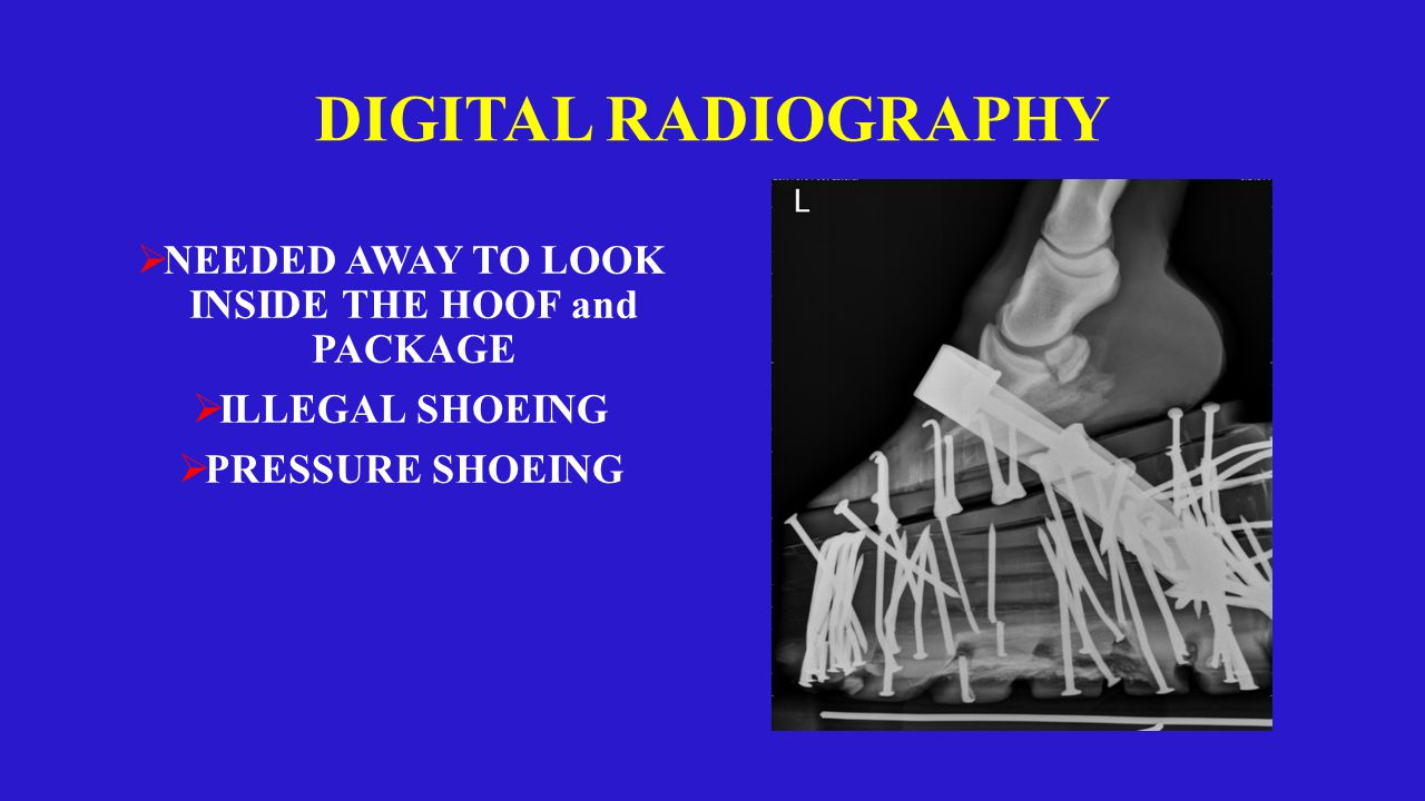 DIGITAL RADIOGRAPHY  NEEDED AWAY TO LOOK INSIDE THE HOOF and PACKAGE  ILLEGAL SHOEING  PRESSURE SHOEING