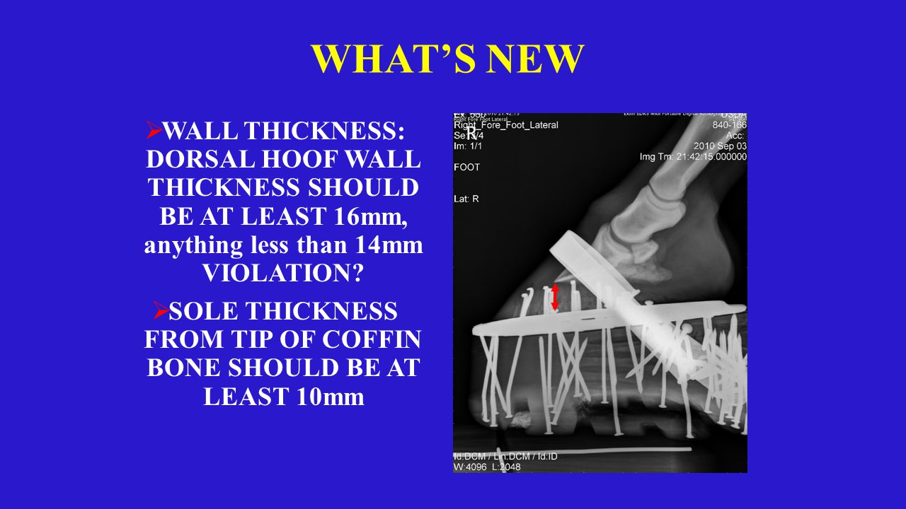 WHAT'S NEW  WALL THICKNESS: DORSAL HOOF WALL THICKNESS SHOULD BE AT LEAST 16mm, anything less than 14mm VIOLATION.