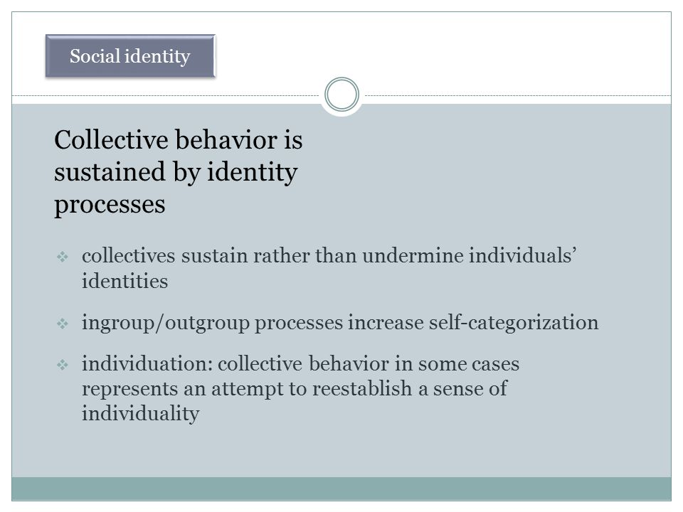 Collective behavior is sustained by identity processes  collectives sustain rather than undermine individuals' identities  ingroup/outgroup processe