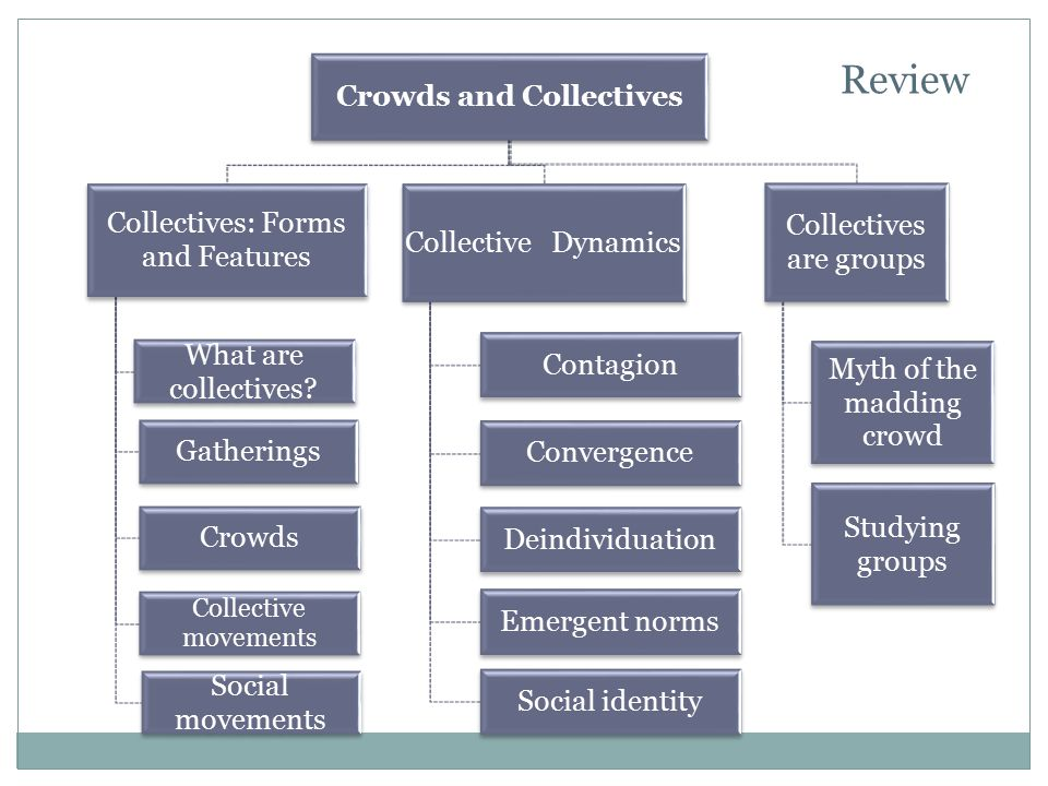 Crowds and Collectives Collectives: Forms and Features What are collectives? Gatherings Crowds Collective movements Social movements Collective Dynami
